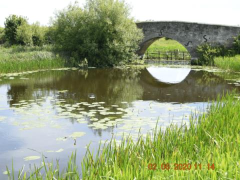 River Thame – Ickford